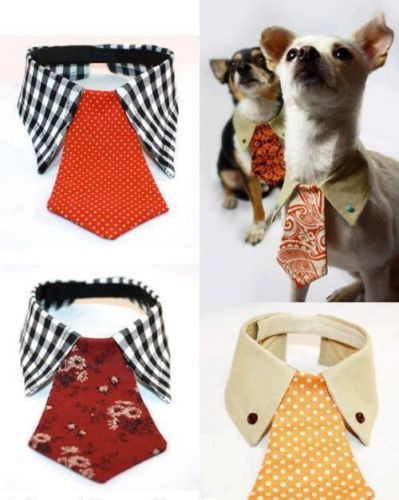 Cute collar & tie for your dog