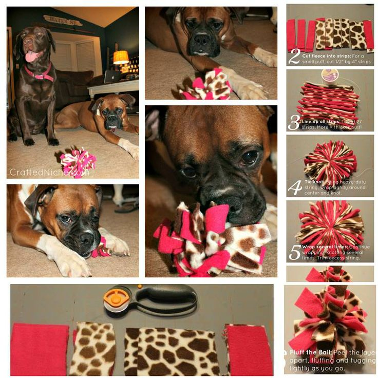DIY Fleece Dog Toy-2