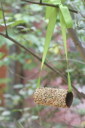 Toilet_Roll_Bird_Feeder-300x449