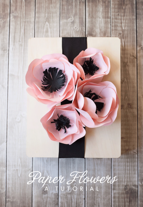 PAPER-FLOWER-TUTORIAL