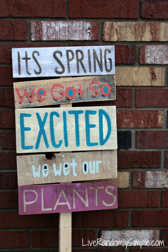 Its Spring - DIY Projects for Making Money - Big DIY Ideas
