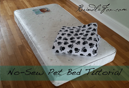 No Sew Diy Dog Bed Bigdiyideas Com
