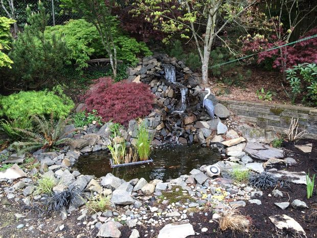 40 diy backyard ideas on a small budget for Yard ponds and waterfalls