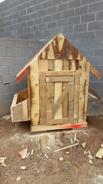 Chicken coop made of pallets