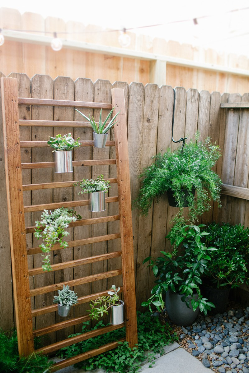 Diy outdoor succulent wall accent Herb garden wall ideas