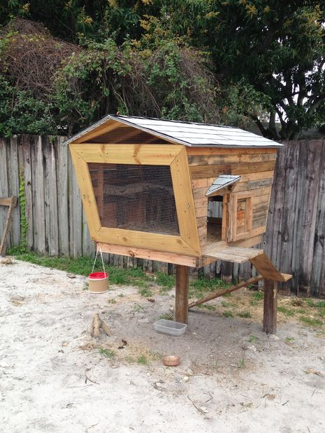 MY 120 Lollipop Chicken Coop