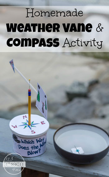 Homemade Weather Vane and Compass Activity