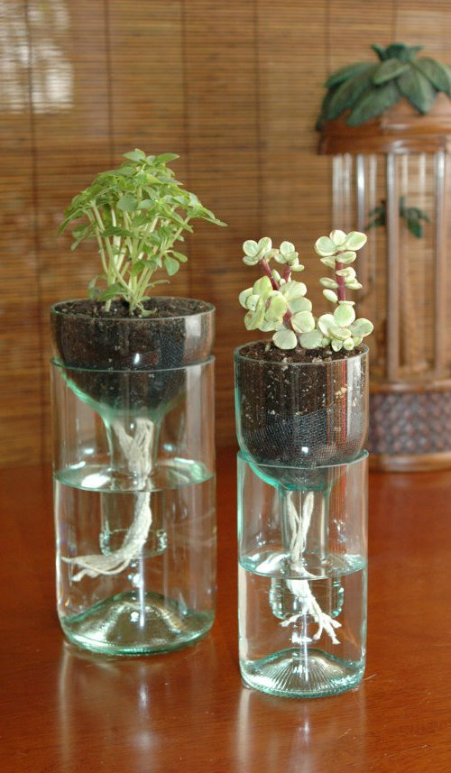 Diy Self Watering Wine Bottle Planter Bigdiyideas Com