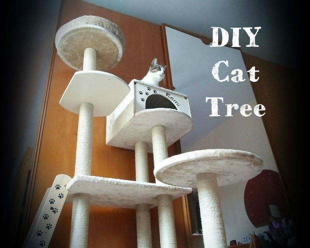 How To Make Ideal Cat Playground