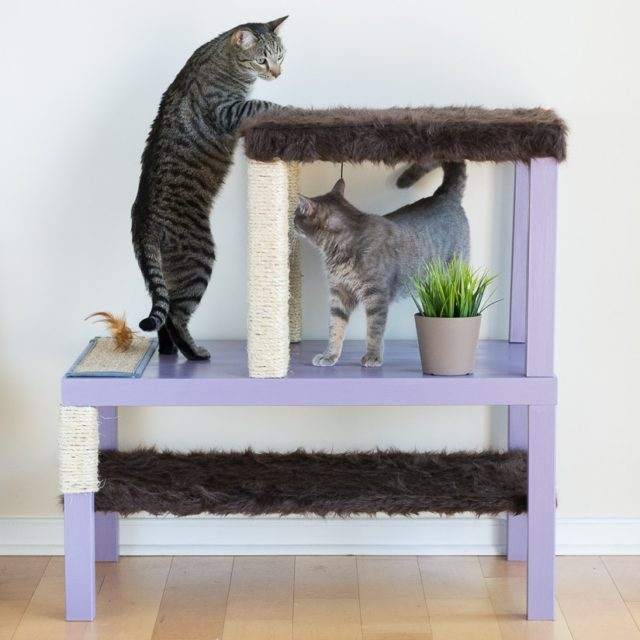 40 cool diy cat tree kitty condos or cat climbers for Make a cat condo