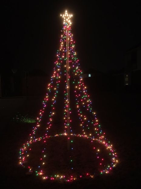 Decorate A Tree Outside With Christmas Lights