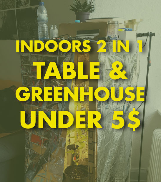 12 Homes Built For Under A 150k Budget: 40 DIY Indoor (in-house) Greenhouse Projects