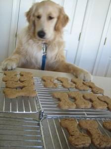 4 ingredient doggie treats