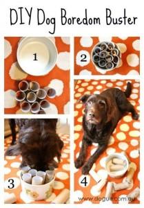 DIY Dog Boredom Buster